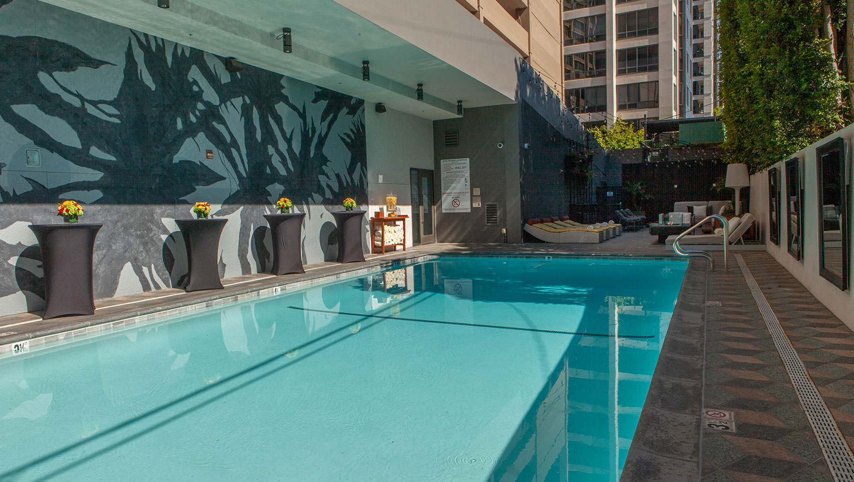kimpton palomar los angeles pool